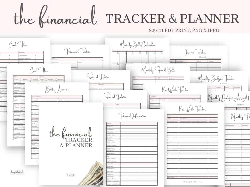 This 36-page Financial tracker/ planner prints at 8.5x11, unlimited access means you can print again and again.7 sections include trackers in:-personal information-finances overview-monthly tracking-tracking sheets-financial goals-savings & challenges-vision boardWorksheets include:-personal information-banking information-special date tracker-password tracker-cash flow tracker-net worth tracker-monthly fixed bills-monthly bills calendar-monthly payments tracker-monthly budget at a glance tracker-monthly budget tracker-income tracker-account tracker-expense tracker-cheque tracker-debt tracker-spending tracker-and much more!