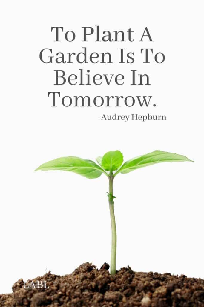 To pant a garden is to believe in tomorrow. -Audrey Hepburn. Audrey Hepburn was right when she said this beautiful #GardeningQuote Gardening for mental health is incredibly powerful and planning for the future is only one of the 9 benefits I talk about on the blog. Read them all now! #MentalHealth #Gardening #BackYardGarden #BenefitsOfGardening #Depression #Anxiety #Stress #HowToUnwind #FindingPeace