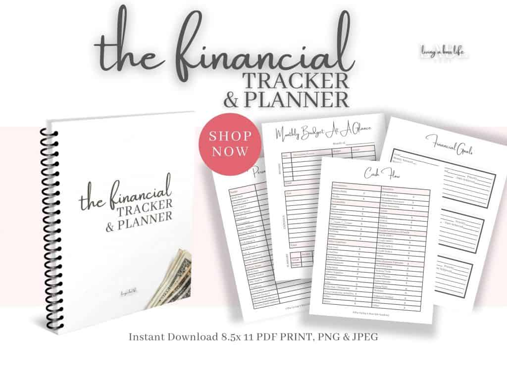 Have you been looking for a way to track your finances and plan your future? Look no further!Grab The Financial Tracker & Planner and set your money goals, financially plan, track savings, cash flow, debt and so much more!This 36-page Financial tracker/ planner prints at 8.5x11, unlimited access means you can print again and again.7 sections include trackers in:-personal information-finances overview-monthly tracking-tracking sheets-financial goals-savings & challenges-vision boardWorksheets include:-personal information-banking information-special date tracker-password tracker-cash flow tracker-net worth tracker-monthly fixed bills-monthly bills calendar-monthly payments tracker-monthly budget at a glance tracker-monthly budget tracker-income tracker-account tracker-expense tracker-cheque tracker-debt tracker-spending tracker-and much more!