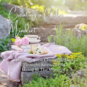 Creating A Calm Mindset: 1 Disaster That Changed What I Thought Knew About Living In The Moment. What I learnt that could help you create a calm mindset and make living in the moment your top priority!#Mindset #CreatingCalm #CalmMindset #Mediation #LivingInTheMoment #Happiness #Joy #BeingPresent #Productivity #FamilyTime #SocialMediaManagement